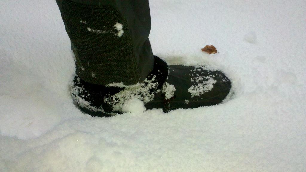 """die ersten Versuche im """"echten Schnee"""" Outdoorfähiger Hausschalpfen"""